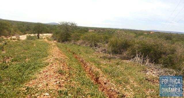 Valas abertas da adutora são tomadas pelo mato (Foto: Maria Amélia Almeida)